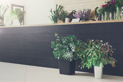 Интерьер цветочного магазина, мелкий бизнес студии флористического дизайна стоковые фото