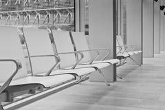 Интерьер Чарлза Дарвина разбивочный на музее естественной истории Стоковое Изображение RF