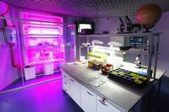 Интерьер чистой современной белой предпосылки медицинских или химической лаборатории Концепция лаборатории без людей стоковая фотография rf
