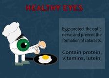 Информация о преимуществах яичек для зрения Стоковое Изображение RF