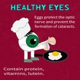 Информация о преимуществах яичек для зрения Стоковые Изображения RF