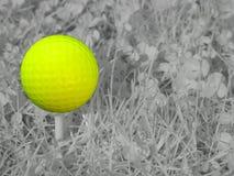 инфракрасный гольфа стоковые фото