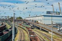 Инфраструктура железной дороги порта Одессы Стоковое фото RF