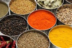 Индеец spices собрание Стоковые Изображения RF