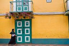 Индигенная женщина идя в живописное Стоковая Фотография RF