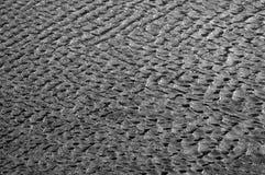 индийская вода текстуры солнца shine океана стоковые фотографии rf