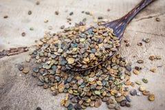 Индийская пенька или пенька Мадраса семя (juncea Crotalaria) на деревянном стоковая фотография rf