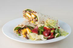 Индийские крен paneer или салат twister и стороны Стоковое Изображение