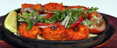 Индийское собрание 19 еды Стоковое фото RF