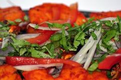 Индийское собрание 21 еды Стоковая Фотография