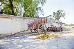 Индийские тележка и сельско-хозяйственная техника вола села Стоковые Изображения