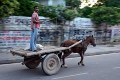 Индийский образ жизни стоковые изображения