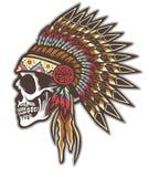 Индийский череп Стоковое Изображение