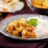 Индийское карри цыпленка масла Стоковые Изображения