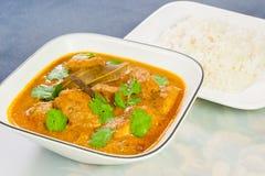 Индийское карри цыпленка с рисом Стоковое Изображение