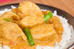 Индийское карри цыпленка с рисом Стоковые Фотографии RF