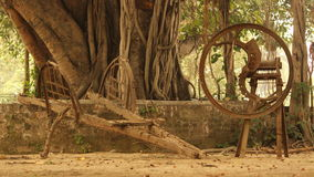 Индийское наследие земледелия Стоковое Изображение