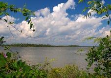 индийское река лагуны стоковые фотографии rf