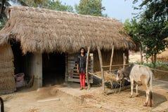 индийское село стоковое изображение rf