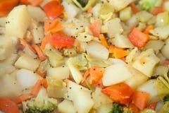 Индийское vegetable sabzi блюда Стоковое Фото