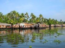 Индия Лес пальмы тропический в назначениях подпоров Ke Стоковое Фото