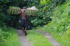 Индонезийский старый работник Стоковые Фото