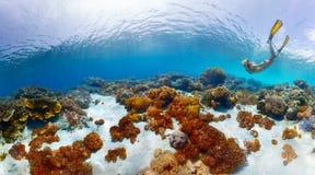 Индонезия Стоковое Изображение