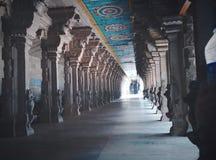 Индусский висок Suchindram Стоковая Фотография RF