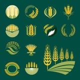 Индустрия земледелия ушей и зерен хлопьев или символ иллюстрации еды вектора дизайна значка логотипа органический естественный Стоковые Изображения