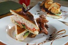 индюк сандвича лакомки Стоковое Изображение