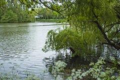 Ипр баррикад гигантское озеро на парке стоковая фотография