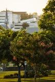 Ипсвич, Австралия - среда 16-ое январь 2018: Взгляд города CBD Ипсвича в после полудня в среда 16-ое январь 2018 Стоковые Фотографии RF