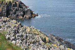 Ирландия Стоковые Фотографии RF
