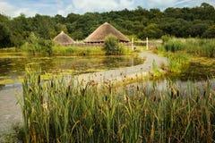 Ирландский парк национальной традиции Wexford Ирландия стоковые фотографии rf
