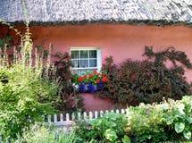Ирландский сад покрыванным соломой коттеджем стоковые изображения