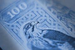 100 дирхамов Стоковое Изображение RF