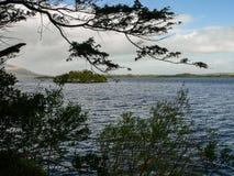 Ирландия Национальный парк Killarney Стоковые Фото