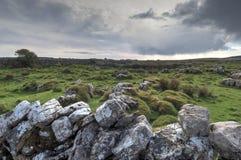 ирландский ландшафт Стоковая Фотография