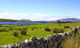ирландский ландшафт Стоковые Фото