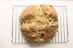 Ирландский хлеб соды Стоковая Фотография RF