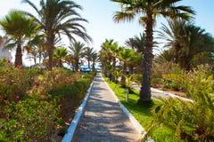 Искать курорт гостиницы в солнечном летнем дне стоковое фото