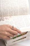 искать права страницы Стоковые Фотографии RF