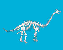 Ископаемый динозавр иллюстрация вектора