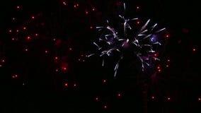 Искры праздничного салюта в темном ночном небе сток-видео