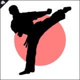 искусства военные Сцена силуэта бойца карате Стоковое фото RF