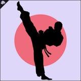 искусства военные Сцена силуэта бойца карате Стоковое Изображение RF