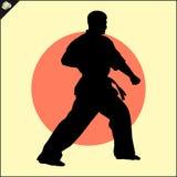 искусства военные Сцена силуэта бойца карате Стоковая Фотография RF
