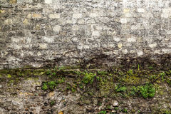 искусственная голубая светлая каменная стена Стоковые Изображения RF
