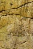 искусственная голубая светлая каменная стена Стоковая Фотография