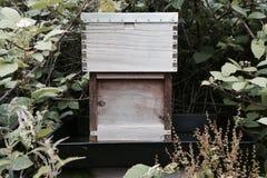 Искусственная крапивница пчелы сделанная из древесины Стоковая Фотография